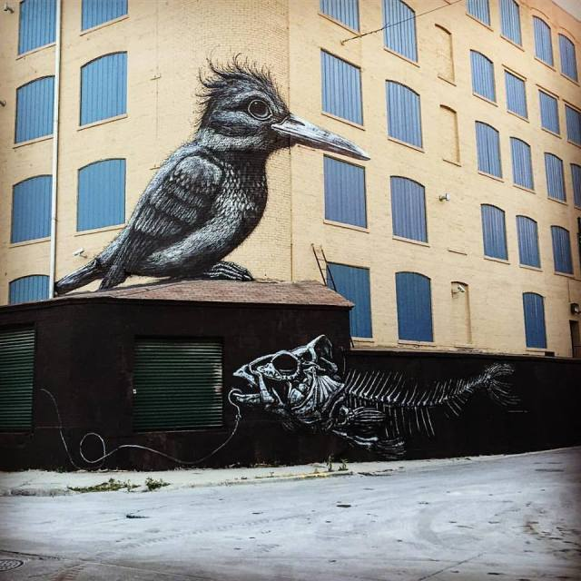 ROA @Chicago, USA