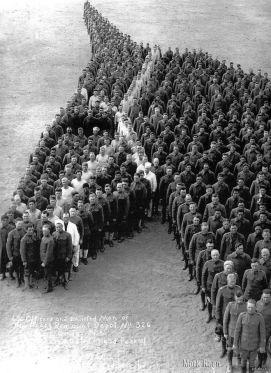 Soldati rendono omaggio agli 8 milioni di cavalli, asini e muli che sono morti durante la prima guerra mondiale