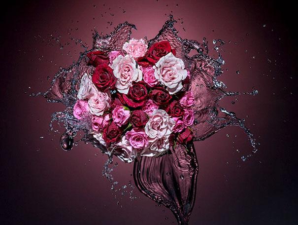 Fotografia di rose bagnate