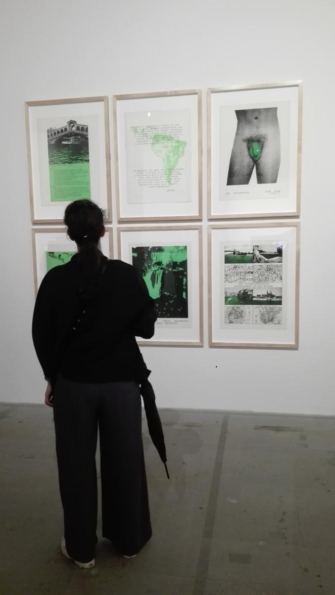 "Biennale Arte 2017 – Arsenale -""Portfolio (Manifesto)"" di Nicolas Garcia Uriburu"
