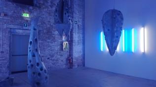 Biennale Arte 2017 – Arsenale - Rina Banerjee (India)