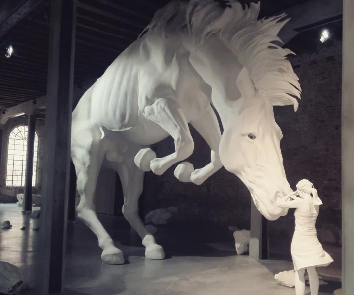 "Biennale Arte 2017 - Arsenale - Padiglione Argentina - ""The horse problem"" di Claudia Fontes (Argentina)"