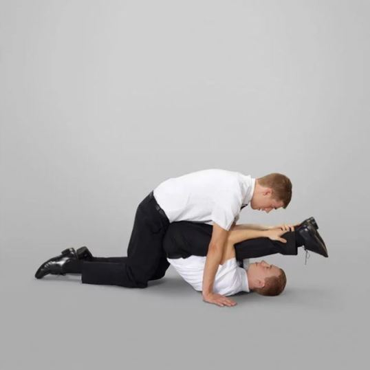 """""""The Book of Mormon Missionary Positions"""" by Neil Dacosta"""