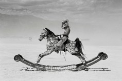 Peikwen Cheng – Free on the Range, 2010 – Lost and Found series