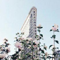 The Flatiron Building, NY by Lina Delika