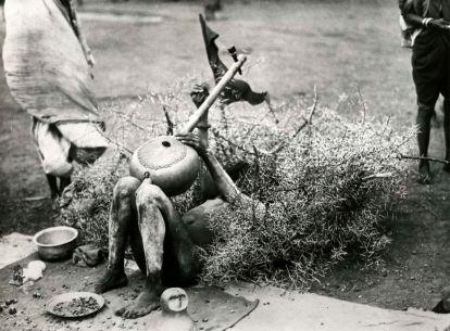 Fachiro indiano
