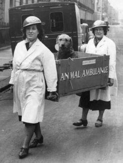 Inghilterra, 1940