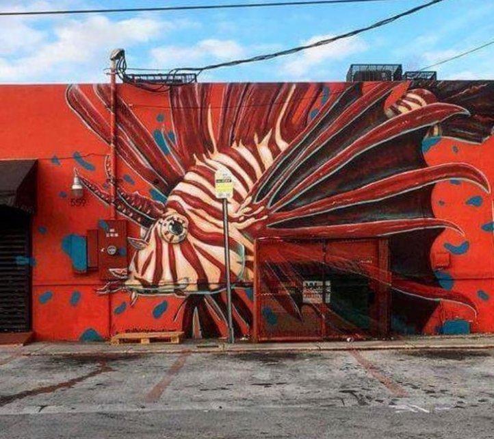 Ivan Roque @Miami, USA
