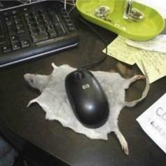 Mousepad topo