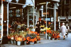 Negozio di fiori a Dublino, 1965
