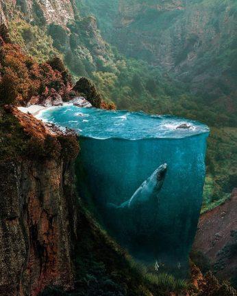Photo Collage di Hüseyin Şahin