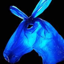 Busta di plastica cavallo