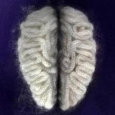 Cervello lanoso