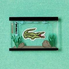 Coccodrillo Lacoste acquario