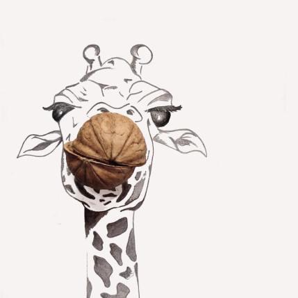 Giraffa noce