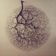 Ciclotrama by Janaina Mello