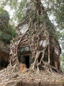 Angkor Wat, in Cambogia