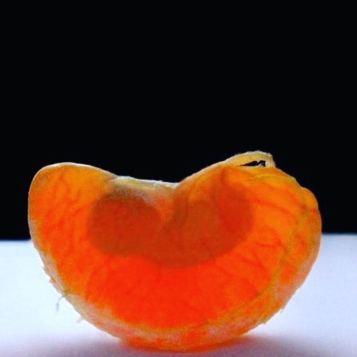 Mandarino incinta