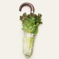 Ombrello per vegetariani
