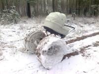 Passeggino ruote da neve
