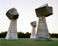 Spomenik #11 (Niš), 2007