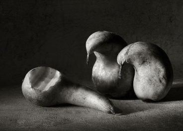Uccelli pere