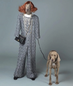 William Wegman for Chanel
