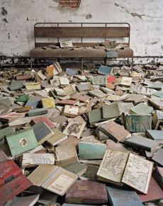 Christopher Payne - North Brother Island (2008-2014)