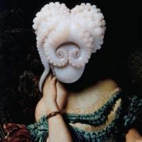 Dama polpo