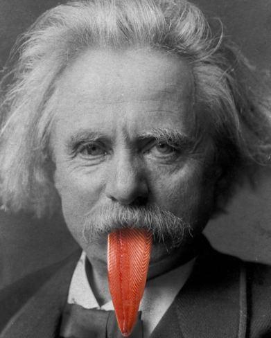Einstein lingua salmone