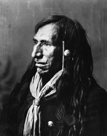 Ritratto di nativo americano di Alex Ross