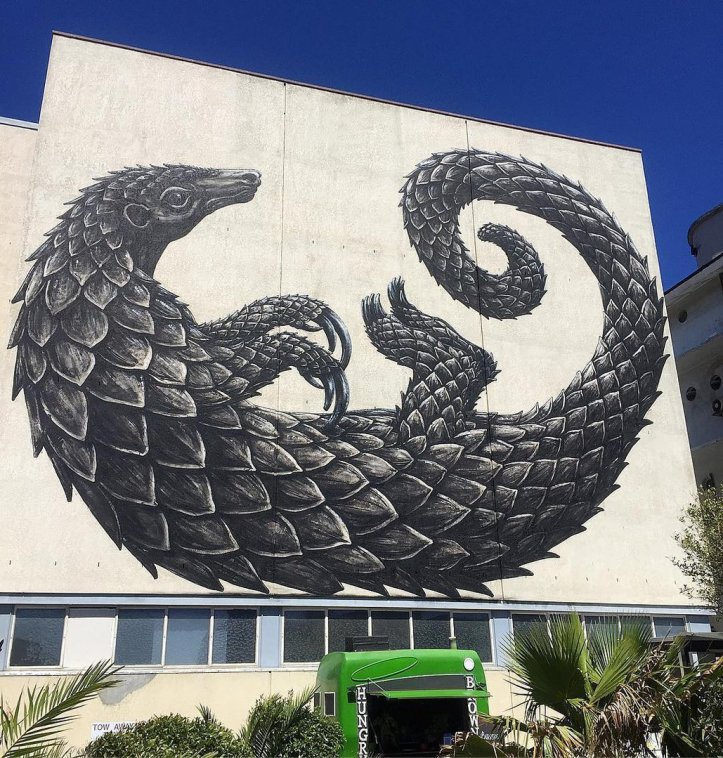 ROA @Cape Town, South Africa