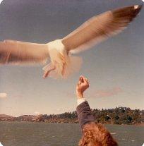 San Francisco, California, maggio 1977 © Dennis Brumm