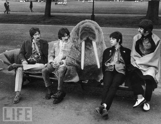 I Beatles e Walrus