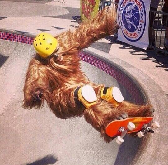 Chewbacca in skateboard alla fine degli anni '80