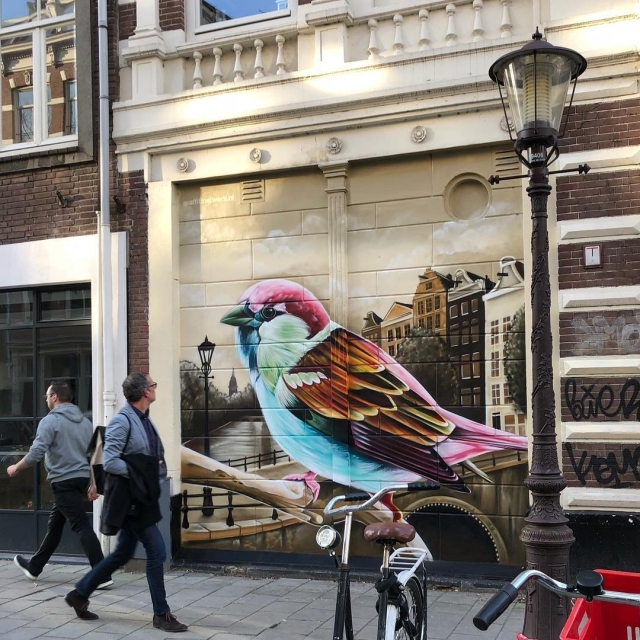 Dopie @Amsterdam, Netherlands