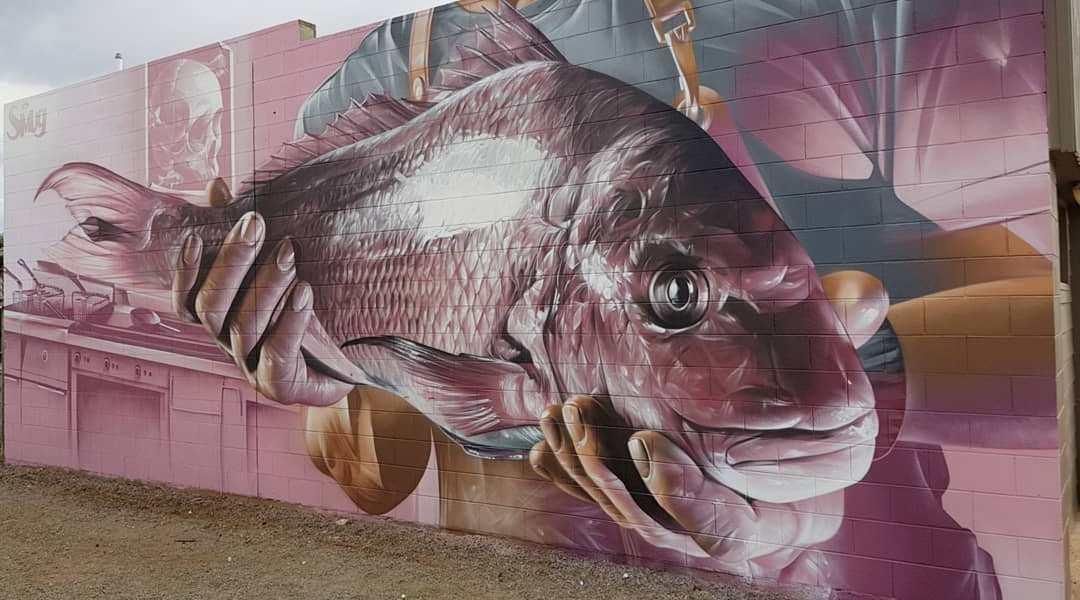 Smug One @Tumby Bay, Australia