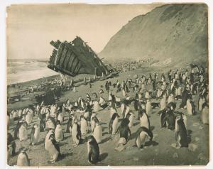 """Naufragio della """"Gratitudine"""", Macquarie Island, 1911. Fotografia di Frank Hurley"""