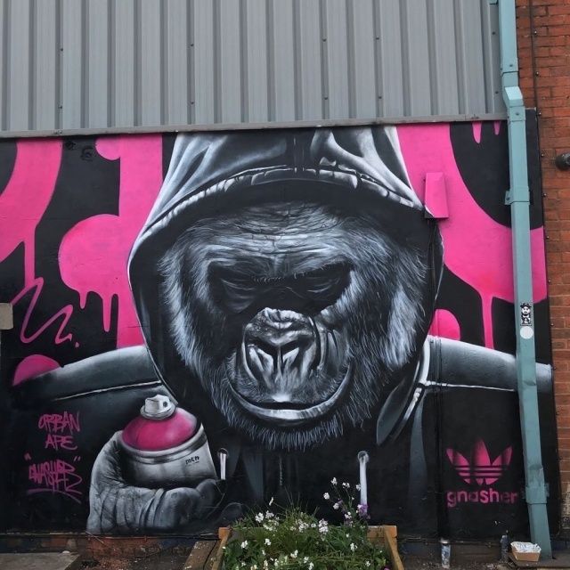 Gnasher @Coventry, UK