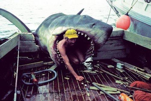 Sul set del film di Jaws, riparazione dei denti dello squalo. 1974