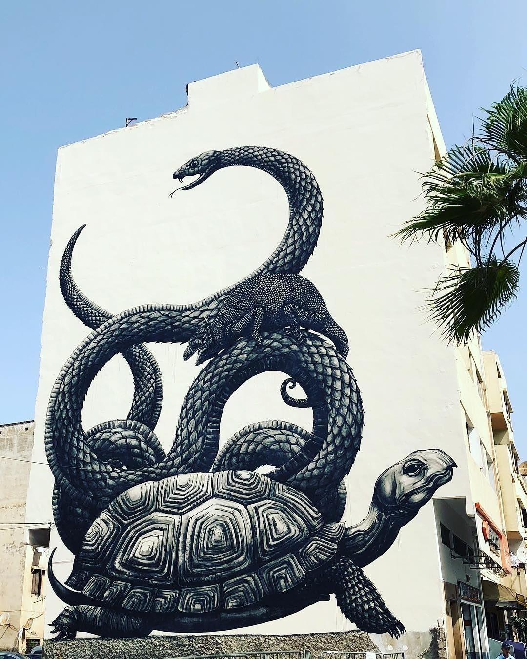 Streetart Flash – ROA @ Casablanca, Morocco