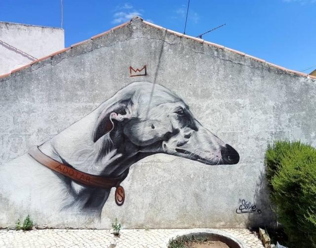 Sake Ieneka @Loures, Portugal