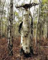 """""""The Birch: the white lady in the woods"""" from Crypt TV (2016, Short Film)"""
