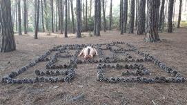 Ambu-Picci - Il labirinto è un concetto