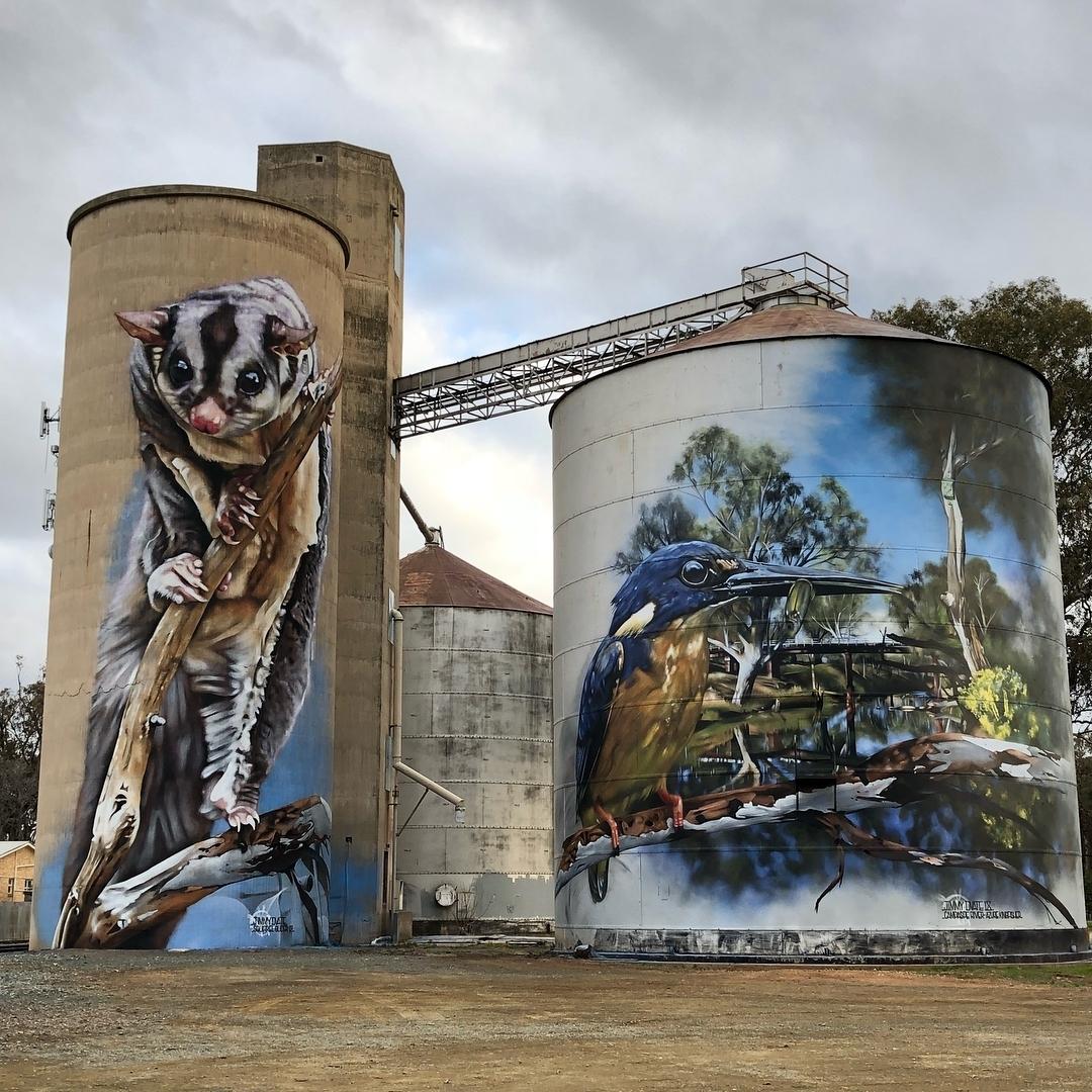 Jimmy DVate @ Rochester, Australia