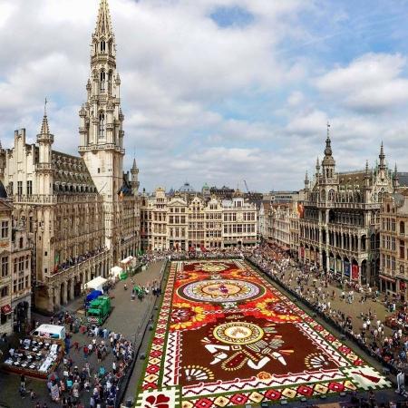 Roo @Brussels, Belgium
