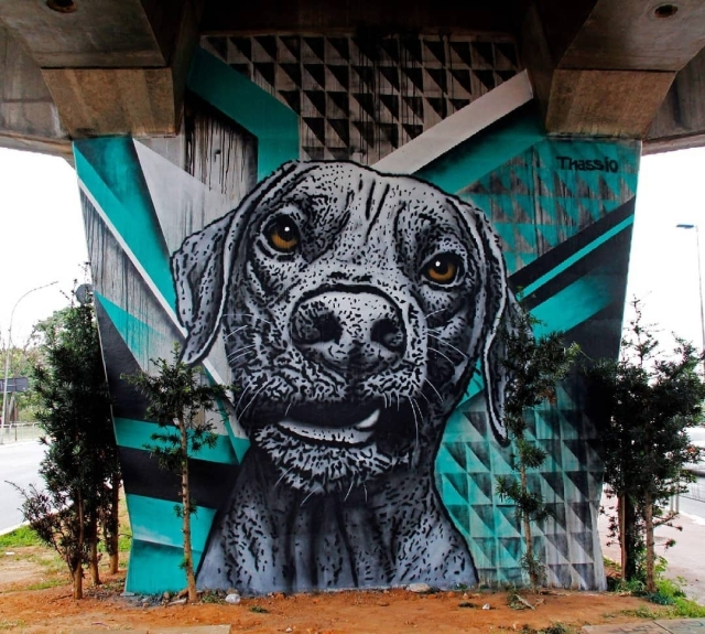 Thassio Bertani @Sao Paulo, Brazil