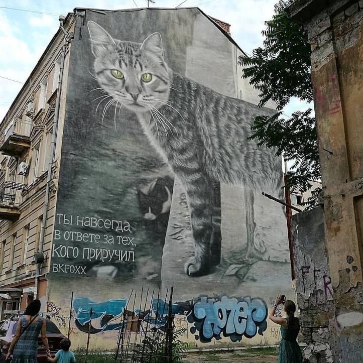 Bkfoxx @Odessa, Ukraine