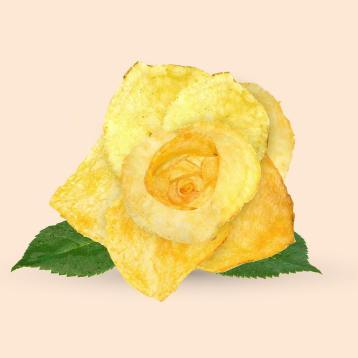Les Créatonautes - The fried yellow rose