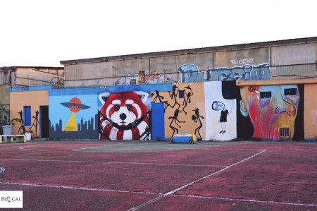 Panda Monserrato, Cagliari